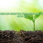 Prayer And Daily Declaration-Destiny